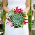 Succulent Bouquet & Wedding Theme