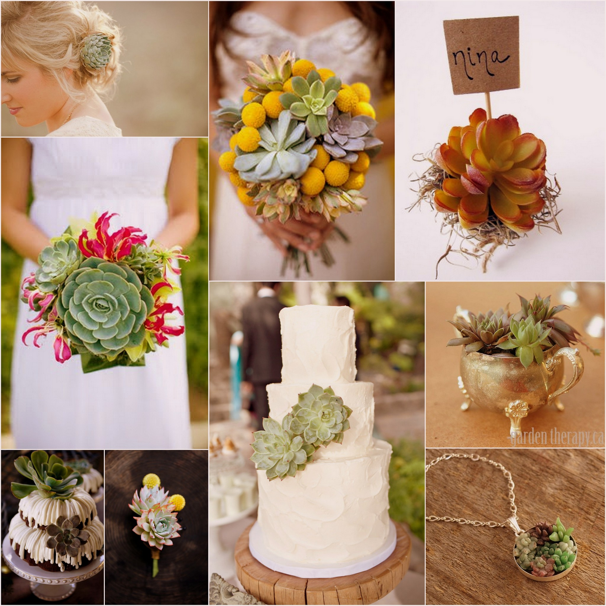 Wedding Theme Ideas: Succulent Wedding Theme Ideas: Bouquets, Decor & Favors