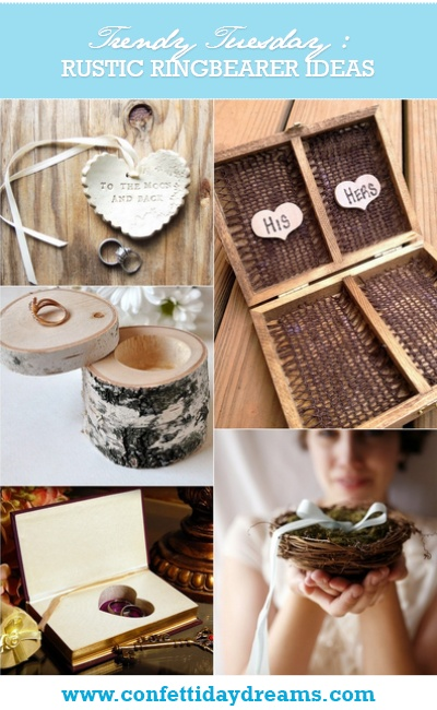 Rustic Ring Bearer and Ring Pillow Alternatives