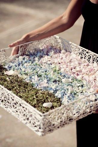 Fresh Flower Petal Confetti