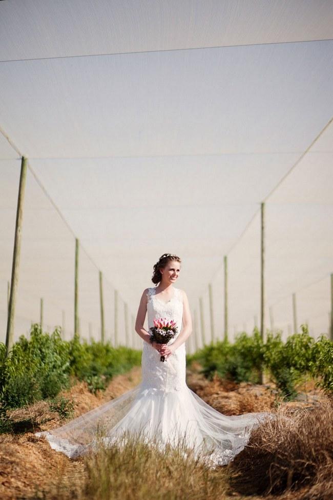 Aqua Blue Red Rustic Farm Wedding South Africa 006