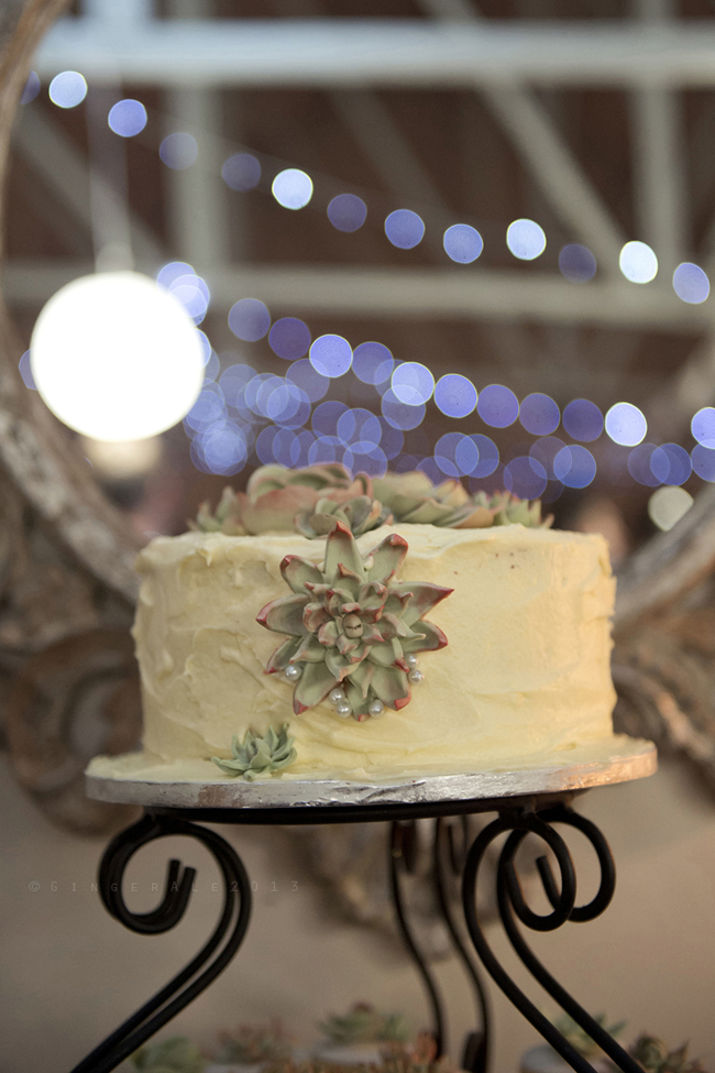 Powder Blue Lace Succulent Wedding Nutcracker Country Retreat (27)