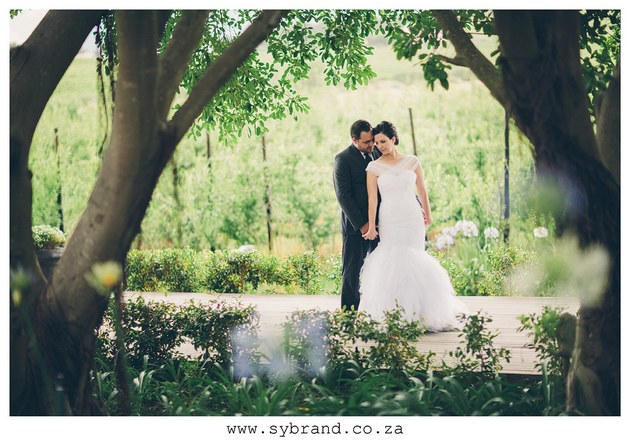 South African Wedding Brenaissance (3)