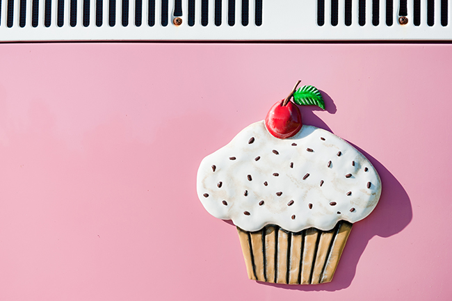 Cupcakes and Combis Pink Engagement Shoot (15)