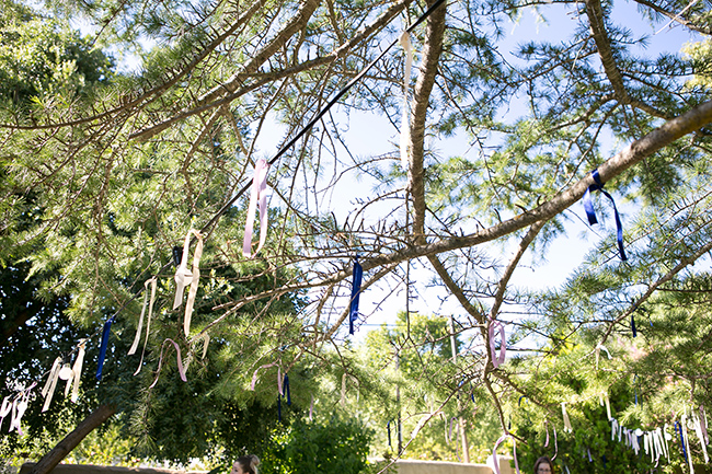 Intimate, Summer Picnic-Style Wedding in Navy & White (80)