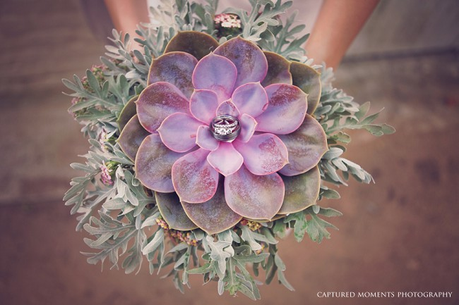 Succulent Bouquet :: Captured Moments Photography :: Via ConfettiDaydreams.com