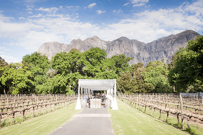 Celebrity weddings south africa pictures cape