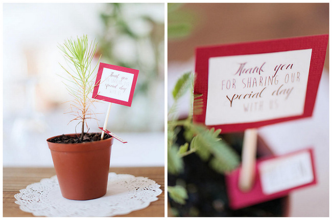 Tree Guest Favors // Red Brown White Autumn Wedding // Christopher Smith Photography - www.Cjphoto.co.za