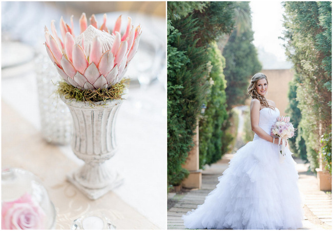Fabulously Feminine Pink and Cream Protea Wedding {Lightburst Photography}