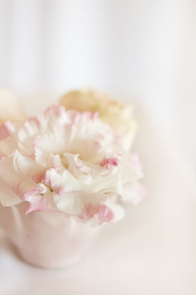 Beautiful blush and Gold Whimsical Wedding Ideas by St Photography