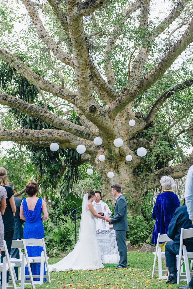 Succulent garden wedding claire thomson photography wedding ceremony under a gorgeous old tree with white chinese lanterns succulent garden wedding junglespirit Image collections