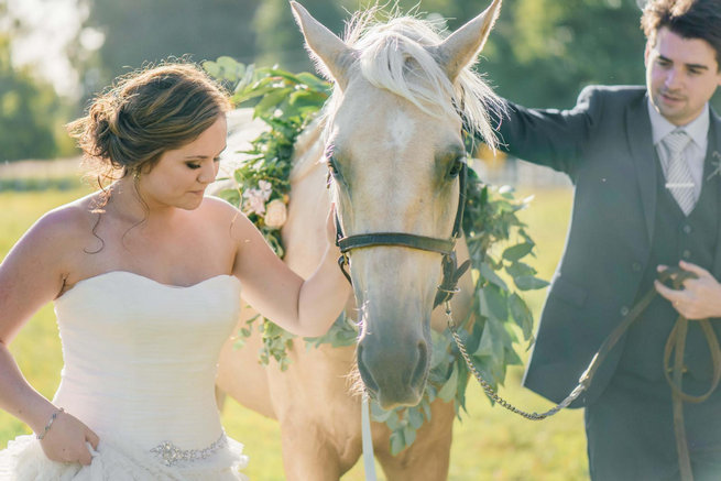 Bride and groom with horse // Langkloof Roses Wedding, Cape Town - Claire Thomson Photography