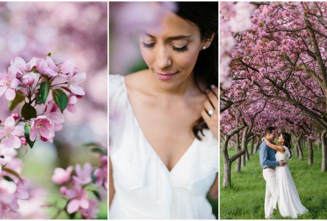 Sweet Apple Blossom Engagement Photographs in Ottawa {Grace & Gold Studio}