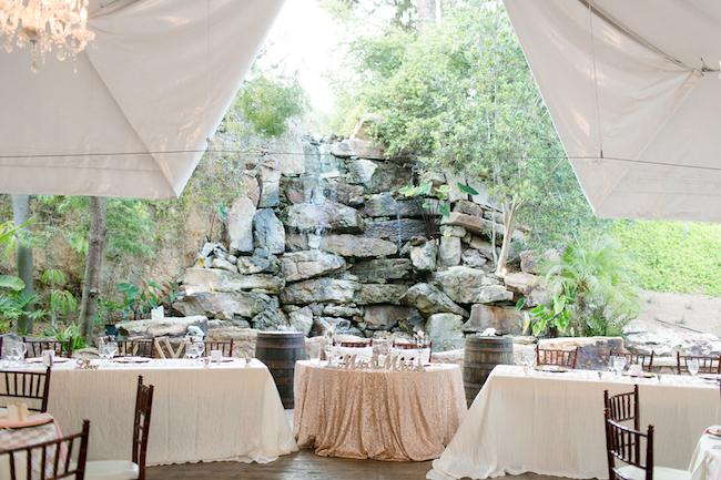 Champagne and Blush Wedding