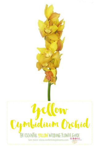 Names and types of yellow wedding flowers with pics flower tips light yellow flowers yellow cymbidium orchid mightylinksfo