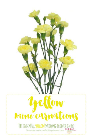 Light Yellow Flowers - Yellow Mini Carnations