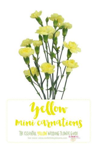 Light Yellow Flowers - Yellow Mini Carnations