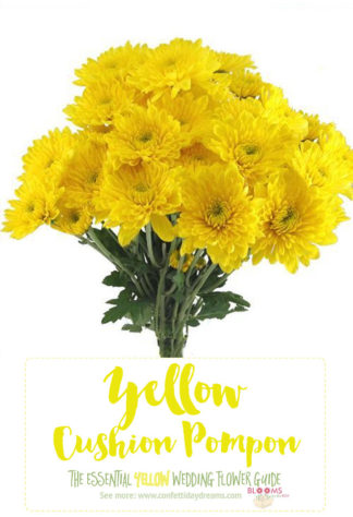 Light Yellow Flowers - Yellow Pompon