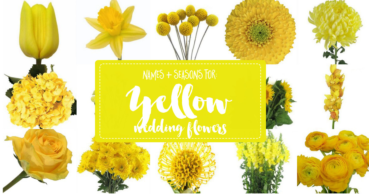 Names and Types of Yellow Wedding Flowers with Pics + Flower