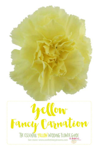 Names and types of yellow wedding flowers with pics flower tips types of yellow flowers yellow carnation mightylinksfo