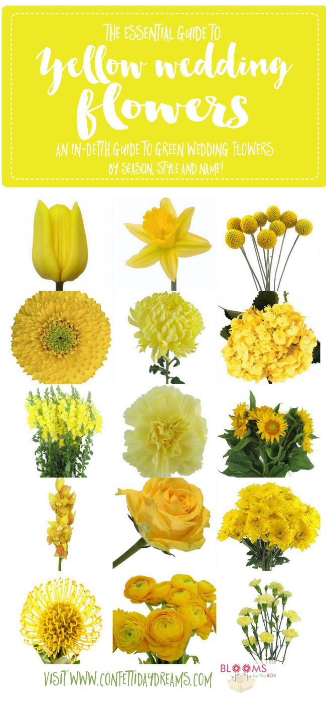 Names and types of yellow wedding flowers with pics flower tips yellow wedding flower guide mightylinksfo