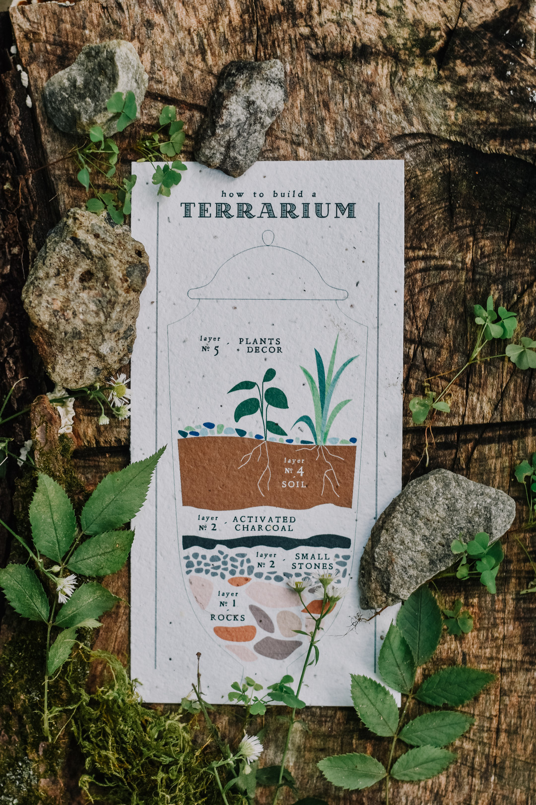 How to make a terrarium.