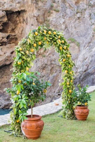 Greenery lemon wedding arch