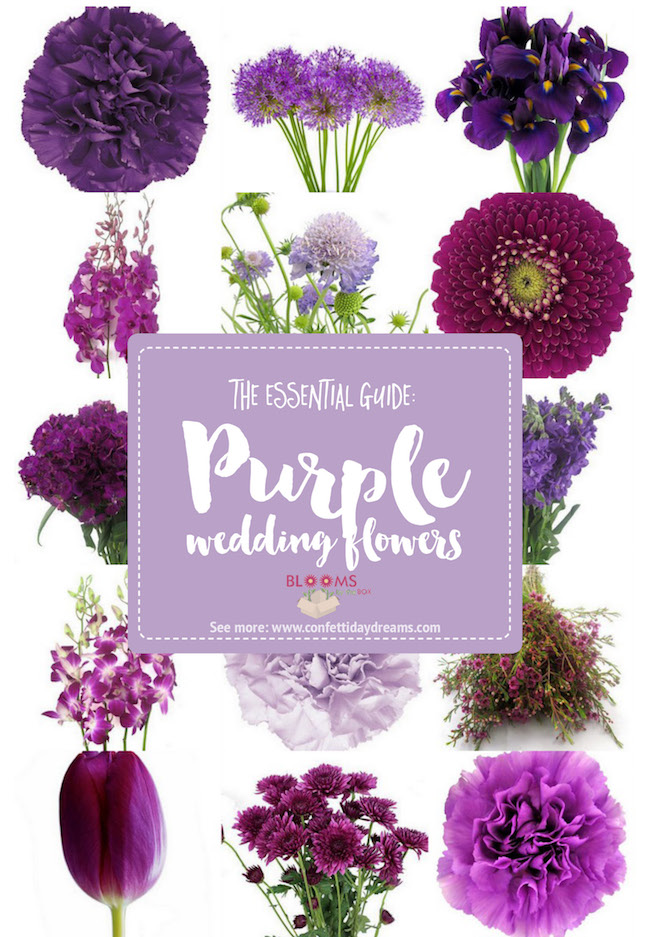 Complete guide to purple wedding flowers purple flower names pics purple wedding flower guide mightylinksfo