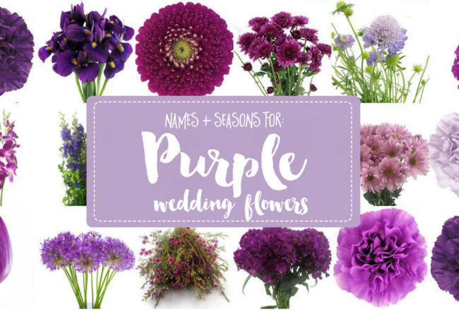 The Complete Guide to Purple Wedding Flowers + Purple Flower Names