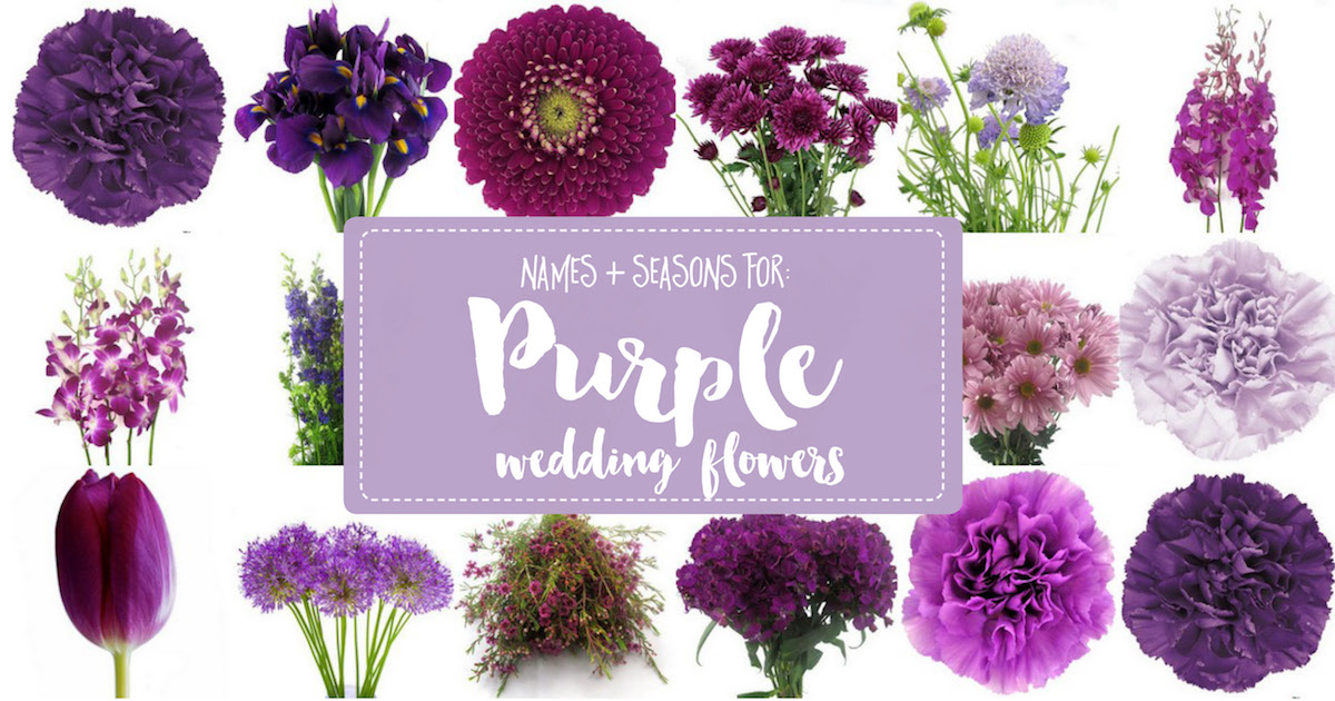 Complete Guide To Purple Wedding Flowers Purple Flower Names Pics