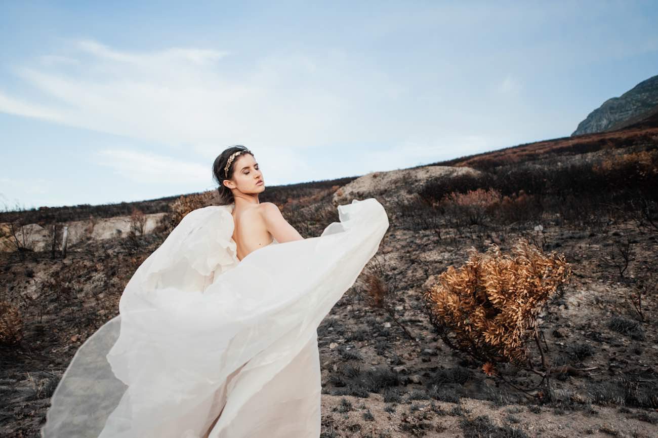 Rising from the ashes into the golden light - Lauren Pretorius Photography
