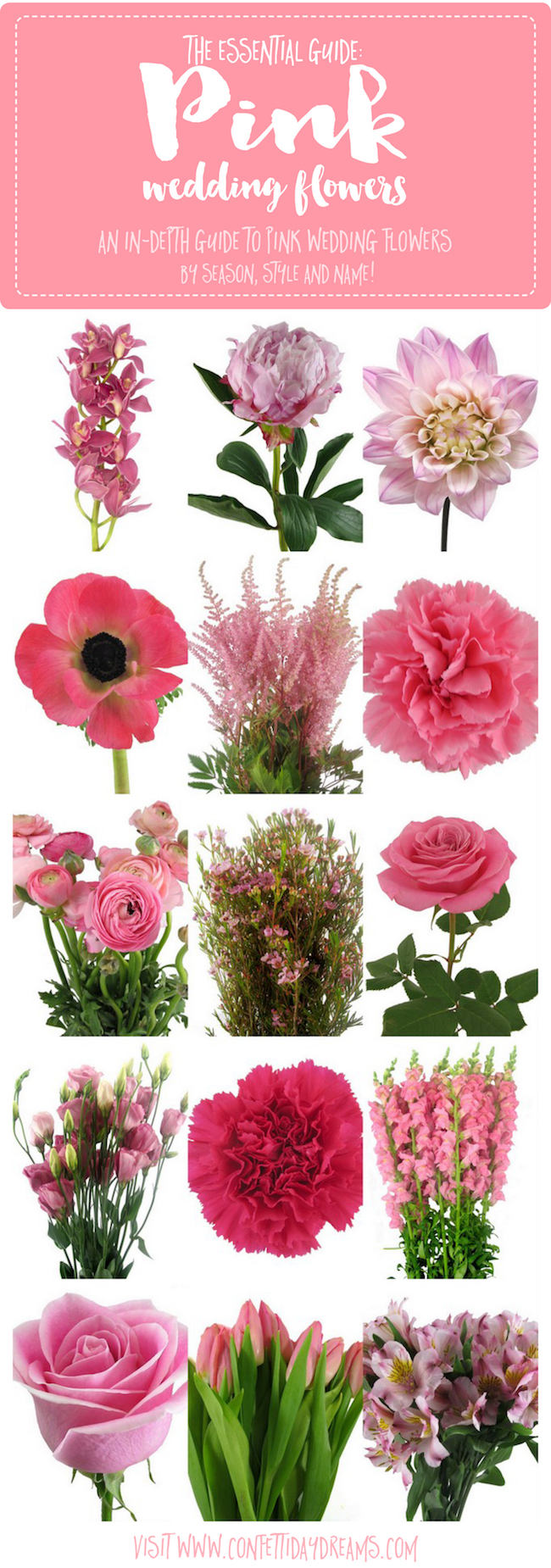 The Essential Pink Wedding Flowers Guide Types Of Pink Flowers