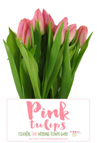 ypes of Pink Wedding Flowers Names