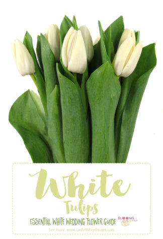 White Wedding Flowers Guide Types of White Flowers Names Pics