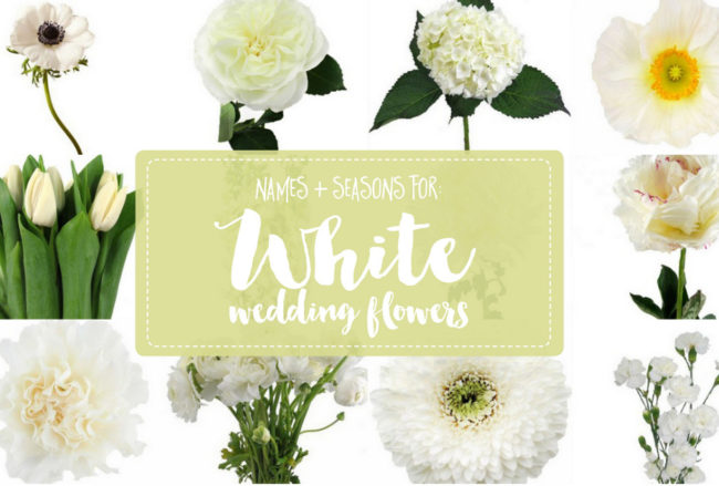 The Essential White Wedding Flowers Guide: Types of White Flowers, Names, Seasons + Pics