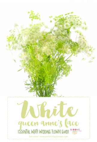 White wedding flowers names