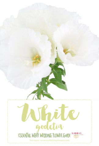 white flowers names