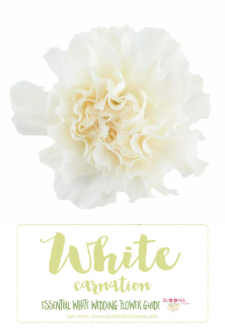 types of white wedding flowers