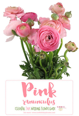 the essential pink wedding flowers guide types of pink